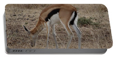 African Wildlife 4 Portable Battery Charger