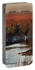 Portable Battery Charger featuring the photograph Afternoon Break by Laura Ragland