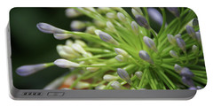 Portable Battery Charger featuring the photograph Agapanthus, The Spider Flower by Yoel Koskas