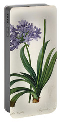 Agapanthus Umbrellatus Portable Battery Charger by Pierre Redoute