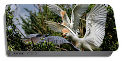 Aggression Between Cattle Egrets And Tricolored Heron Portable Battery Charger