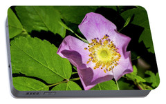 Portable Battery Charger featuring the photograph Alberta Wild Rose Opens For Early Sun by Darcy Michaelchuk