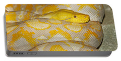 Albino Reticulated Python Portable Battery Charger