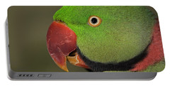 Alexandrine Parakeet Portable Battery Charger