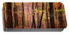 All Fall Portable Battery Charger