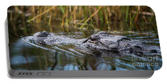 Alligator Closeup-2-0600 Portable Battery Charger