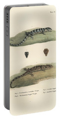 Alligator Lizards Portable Battery Charger