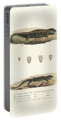 Alligator Lizards From Mexico Portable Battery Charger