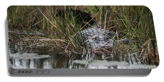 Alligator Lurks-0620 Portable Battery Charger