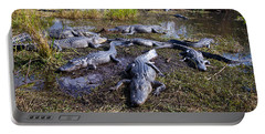 Alligators 280 Portable Battery Charger by Michael Fryd