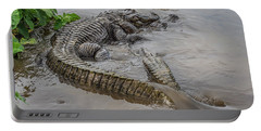 Alligators Courting Portable Battery Charger