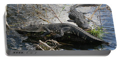 Portable Battery Charger featuring the photograph Alligators In An Everglades Swamp by Max Allen
