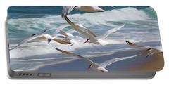 Aloft Again Portable Battery Charger by Joe Schofield