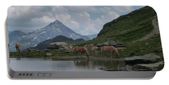 Alps' Horses Portable Battery Charger