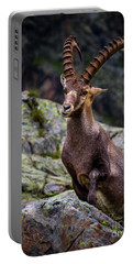 Alpine Ibex Portable Battery Charger