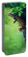 Alpine Newt Triturus Alpestris Portable Battery Charger by Gerard Lacz