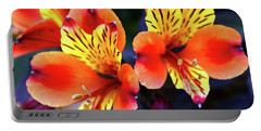 Portable Battery Charger featuring the photograph Alstroemeria Indian Summer by Baggieoldboy