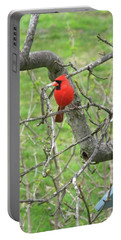 Always With Us -cardinals Portable Battery Charger