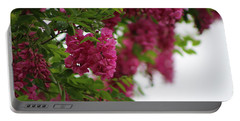 Amaranth Pink Flowering Locust Tree In Spring Rain Portable Battery Charger