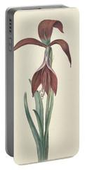 Amaryllis Formosissima Portable Battery Charger
