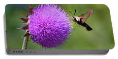 Portable Battery Charger featuring the photograph Amazing Insects - Hummingbird Moth by Kerri Farley