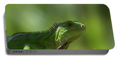 Amazing Look At A Common Iguana Portable Battery Charger by DejaVu Designs