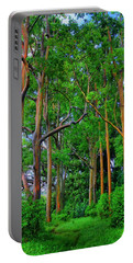 Amazing Rainbow Eucalyptus Portable Battery Charger