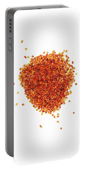 Amber #8022 Portable Battery Charger