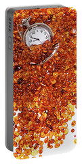 Amber #8595 Portable Battery Charger