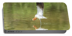 American Avocet Stretching Portable Battery Charger