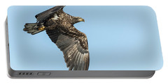 Portable Battery Charger featuring the photograph American Bald Eagle 2017-17 by Thomas Young