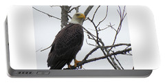 American Bald Eagle Pictures Portable Battery Charger by Scott Cameron
