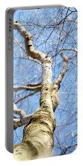 Portable Battery Charger featuring the photograph American Beech Tree by Christina Rollo