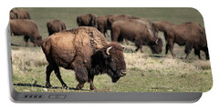 American Bison 5 Portable Battery Charger