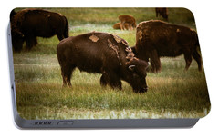 Portable Battery Charger featuring the photograph American Bison Grazing by Chris Bordeleau