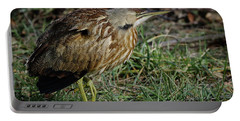 Portable Battery Charger featuring the photograph American Bittern by Douglas Stucky