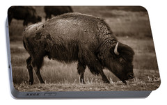 Portable Battery Charger featuring the photograph American Buffalo Grazing by Chris Bordeleau
