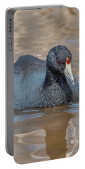 American Coot Dmsb0140 Portable Battery Charger
