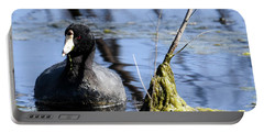 Portable Battery Charger featuring the photograph American Coot by Gary Wightman