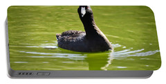 American Coot Portrait Portable Battery Charger