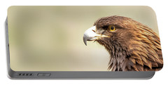 American Golden Eagle Portable Battery Charger