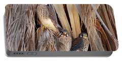 Portable Battery Charger featuring the photograph American Kestrels by Dan Redmon