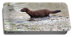Portable Battery Charger featuring the photograph American Mink by Ricky L Jones