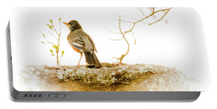 American Robin In Spring Portable Battery Charger