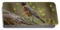 American Robin Portable Battery Charger by Ray Congrove