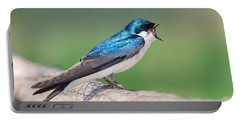 Portable Battery Charger featuring the photograph American Tree Swallow by Debbie Stahre