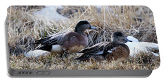 American Wigeon Mated Pair Portable Battery Charger