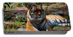 Portable Battery Charger featuring the mixed media Amur Tiger 10 by Angelina Vick