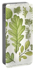 An Arrangement Of Nature Painting Of Various Leaves Portable Battery Charger