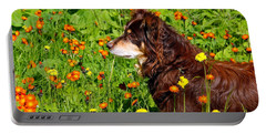 Portable Battery Charger featuring the photograph An Aussie's Thoughtful Moment by Debbie Oppermann